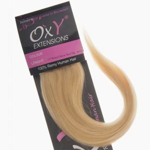 Clip in Extensions 38cm 70g 613 Extra Helles Blond-0